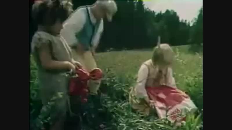 Filmist Nukitsamees - Kodulaul