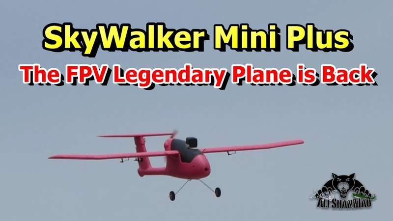 Skywalker Mini Plus 1100mm Wing Span EPP Best FPV RC Airplane