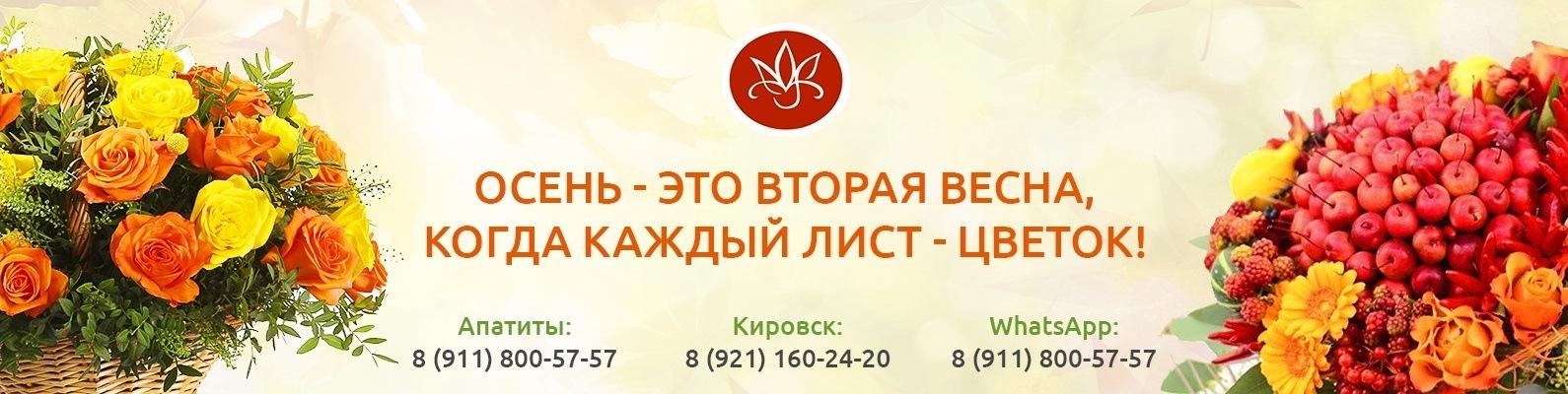 Заказ цветов апатиты с доставкой