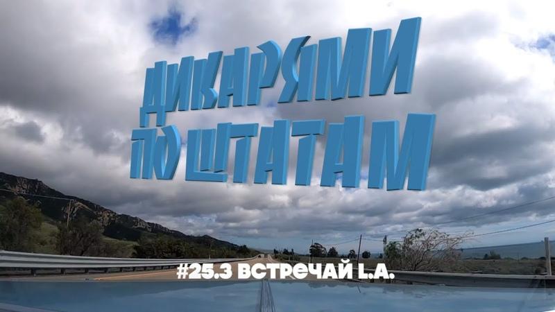 LOS ANGELES ЮЖНЫЙ ЦЕНТРАЛ МОТЕЛЬ ДИКАРЯМИ ПО ШТАТАМ 25 3 4K