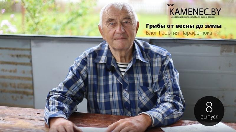 Грибы от весны до зимы. Выпуск 8. Блог Георгия Парафенюка