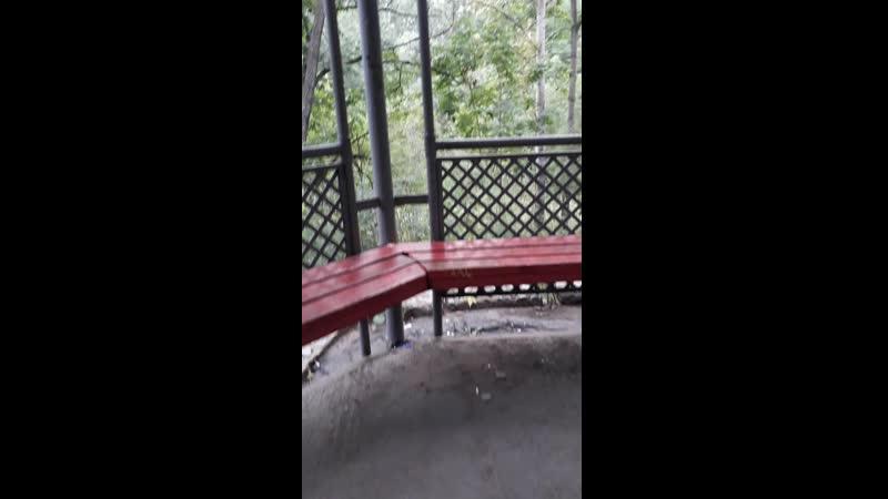 янка в парке
