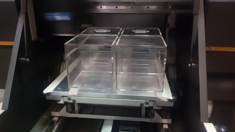 Печать белыми чернилами на боксах из оргстекла