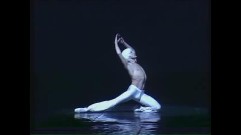 Валерий Михайловский Лебедь Valery Mikhailovsky Dying Swan