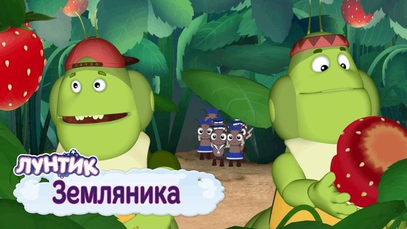 Земляника 🍓 Лунтик 🍓 Сборник мультфильмов 2019