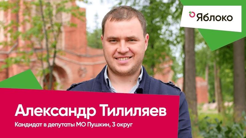 👨🏻💼 Тилиляев Александр Сергеевич – кандидат в депутаты МО Пушкин, 3-й округ