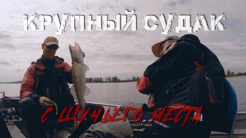 КРУПНЫЙ СУДАК с щучьего места - Рыбалка со stigan'ом
