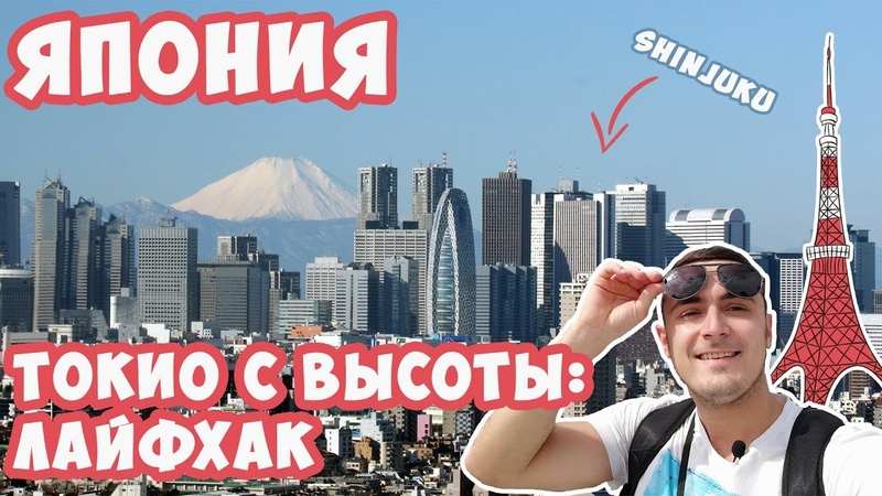 Токио с высоты птичьего полета, Shinjuku, Императорский дворец, телебашня, Роппонги, Mc'Donalds