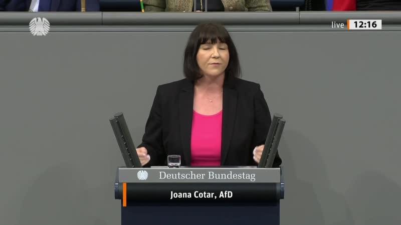 Willkommen in der Märchenstunde der GroKo Joana Cotar AfD Fraktion im Bundestag 1080p 25fps H264 128kbit AAC