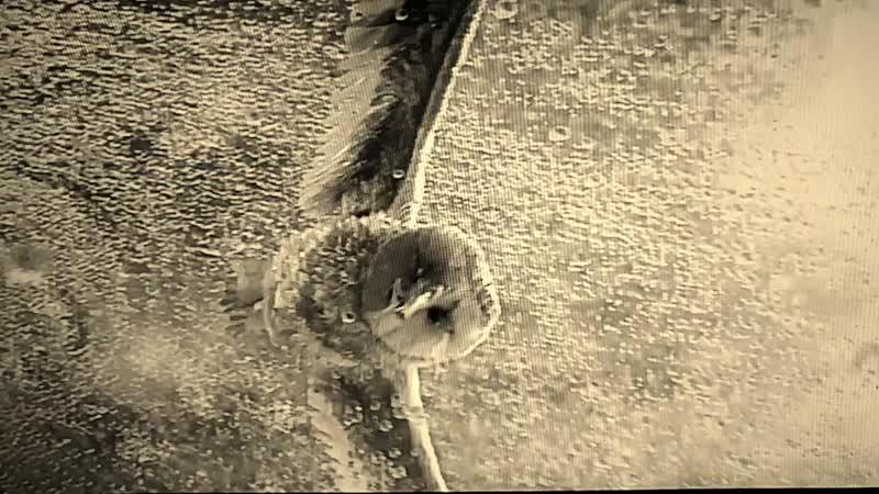 Вверх Водяра Блюз
