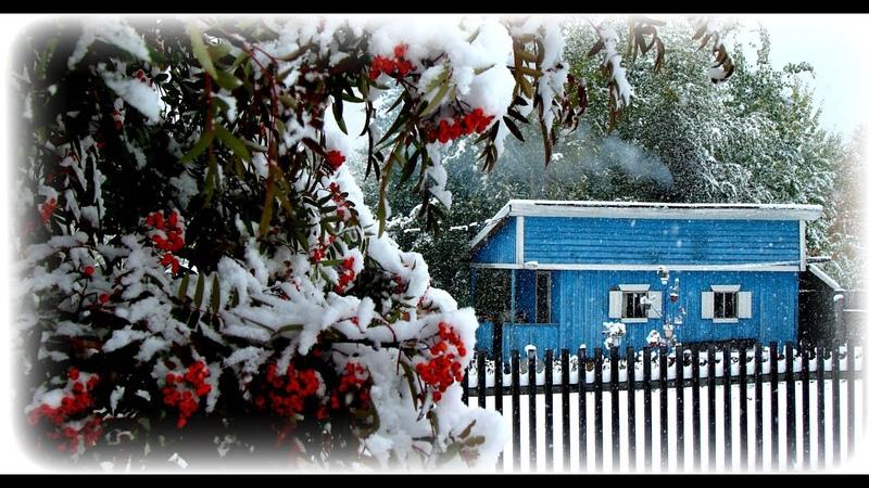 Снежная симфония на даче и не только
