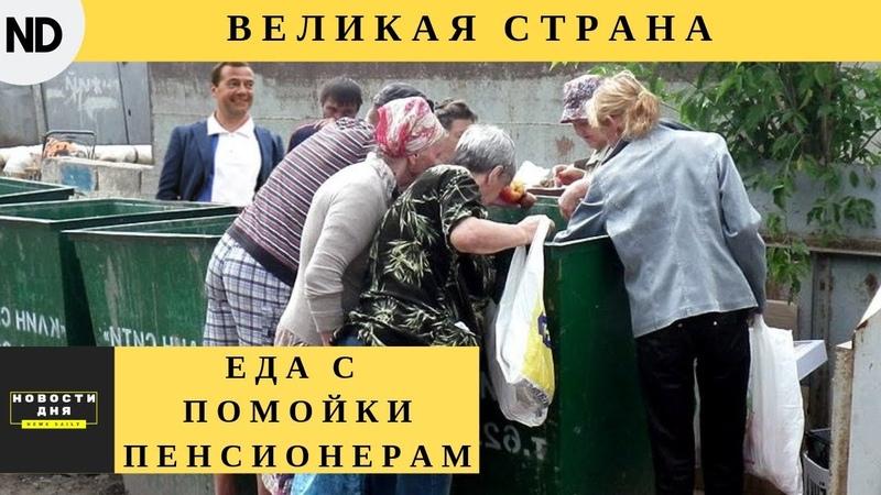 Пенсионеры России ищут еду на помойках. Великая страна!