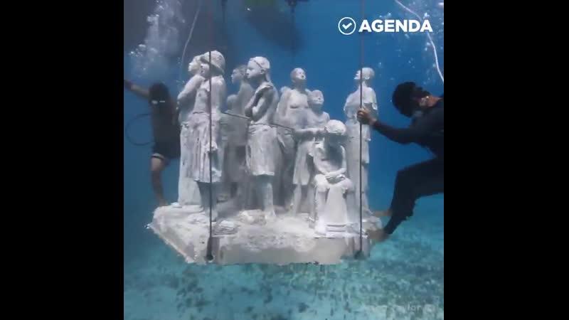 VIDEO 2019 12 10 11 15