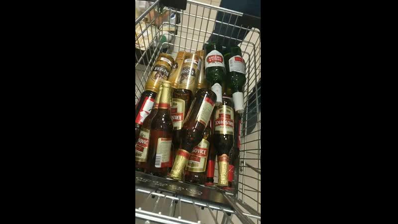 Hodně piva