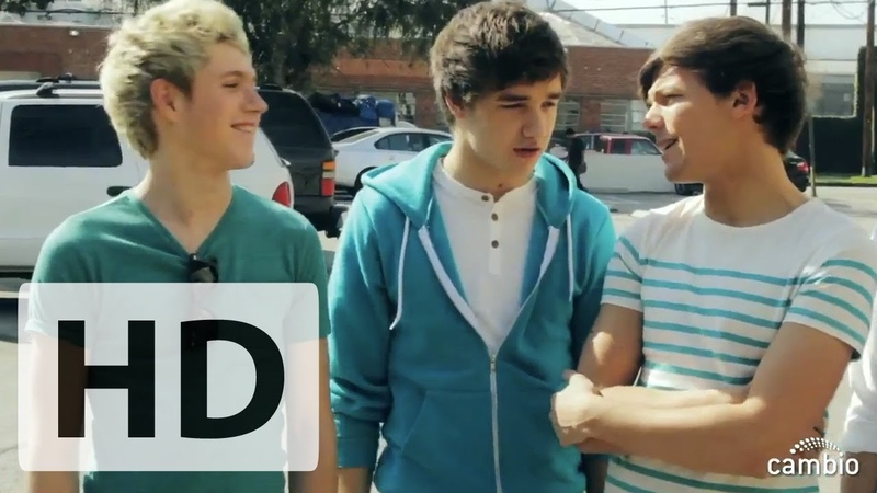 One Direction Guys Reveal Their Dream Valentines! | Cambio Interview