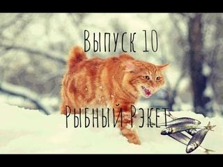 Мелочь не переставала клевать! зимняя рыбалка и кот!