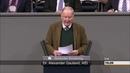 Bundestag 13.11.2017 * Umfassende Grenzkontrollen sofort einführen * Alexander Gauland AfD