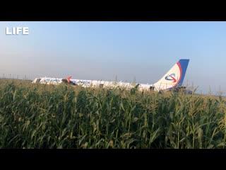 Пассажиров севшего в поле борта встречают в аэропорту