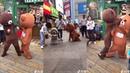 【抖音】最紅的網紅熊,又騷又浪!一次看個夠 Funny Brown Bear in Tik Tok China.