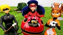 Miraculous Ladybug Transformation by Akuma Dolls at a Picnic