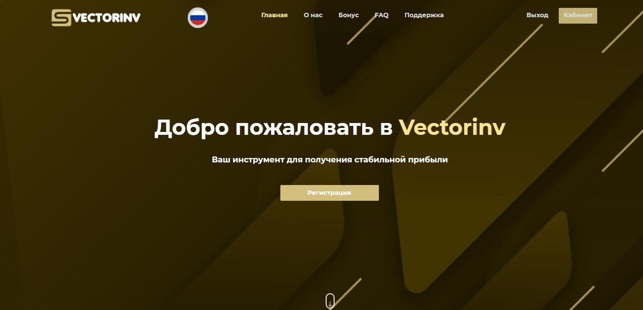 Vectorinv