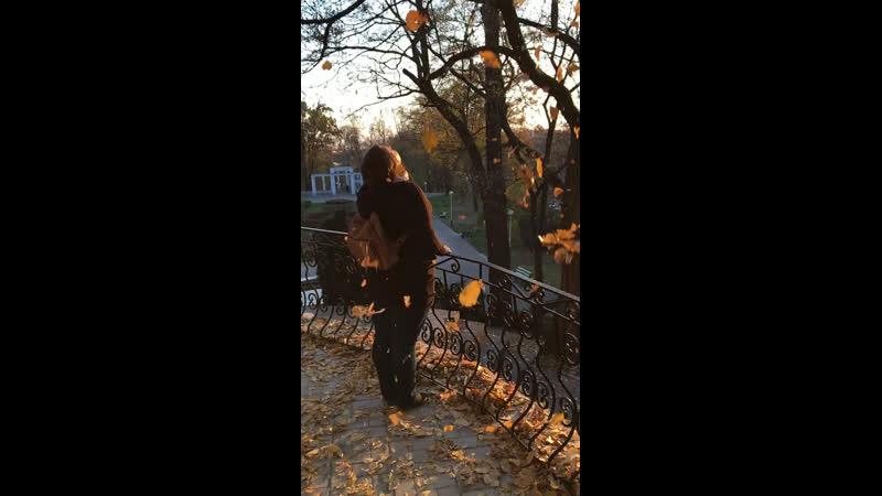 Солнечная осень 🍂