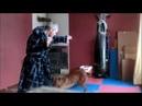 Чхарек/Танец с собакой/Dance with dog/Martial art/Боевой стиль