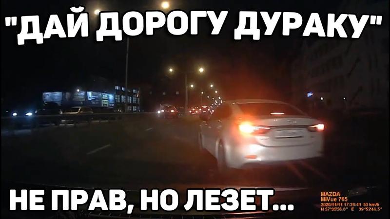 Автоподборка Дай Дорогу Дураку 🚙Торопыги и Водятлы 193