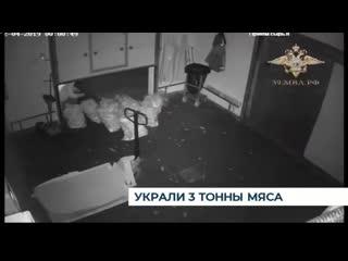 В Правдинске будут судить троих местных жителей за кражу 3 тонн мяса