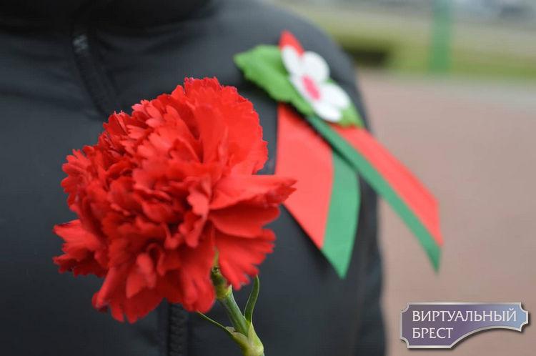 Доплаты, социальные льготы и просто внимание - ни один из 4,7 тыс. ветеранов ВОВ в Беларуси не забыт