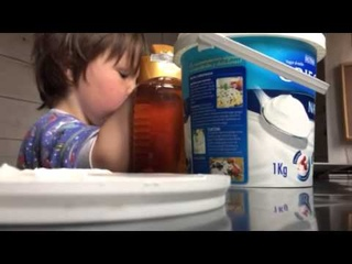 Secret Breakfast Cam Catches a Honey Licker