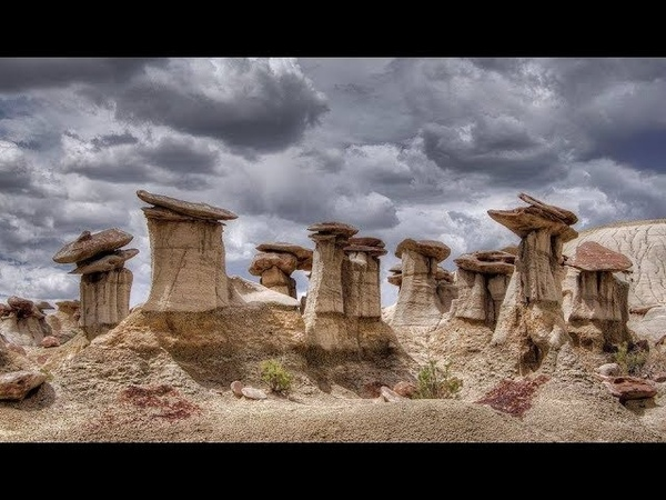 Живые камни Жеоды