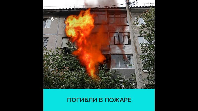 При пожаре в Красноярске погибла семья прокурора — Москва 24