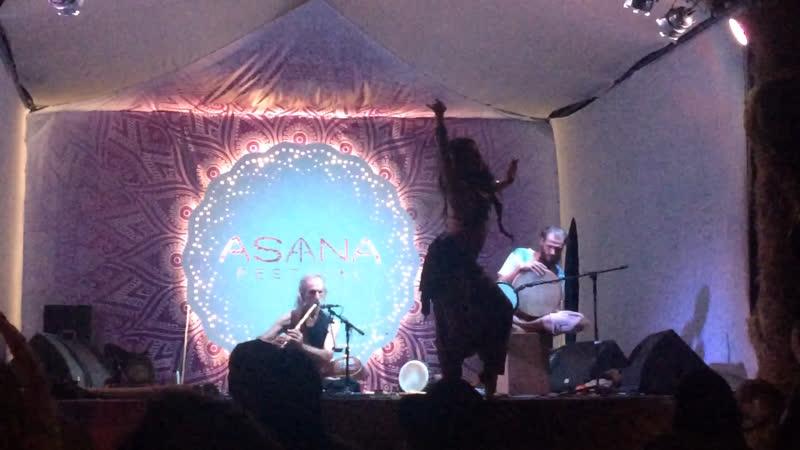 Avi Adir asanafest2019