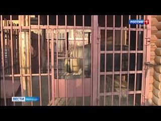 В Липецком зоопарке улучшают жилищные условия животных
