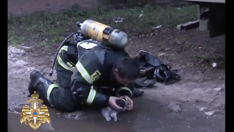 Спасибо, дядя пожарный
