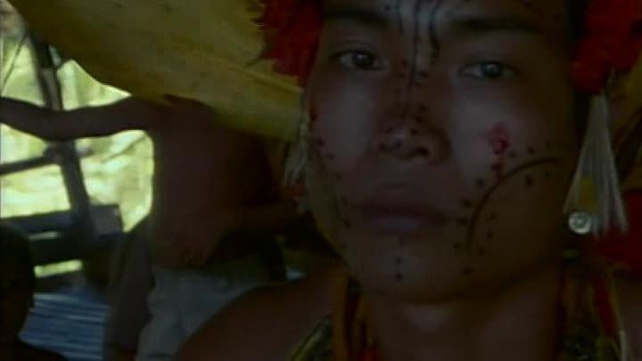 Индонезия 2 - сердце моря 1991. ( Одиссея Жака Кусто ).