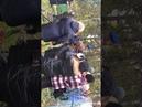 Прямая трансляция с митинга и возложения цветов к могиле Анатолия Морозова