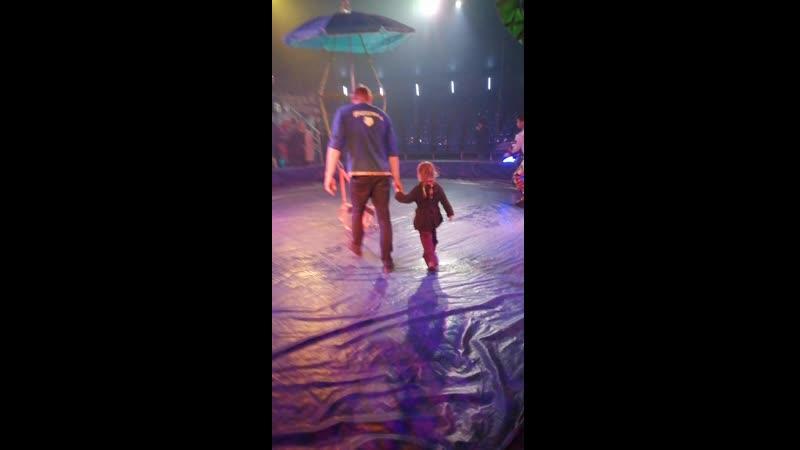 Полет под купол цирка
