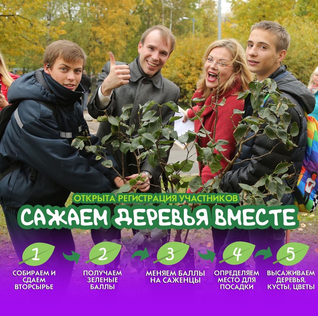 Жители Калининского района примут участие в озеленении своих дворов