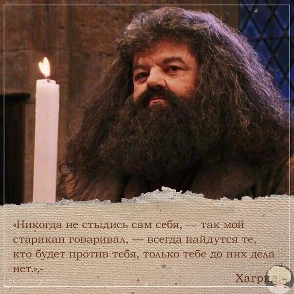 «Нe забывайте о том, что все вeликие волшебники в истории в свое время были тaкими же, как мы,  школьниками