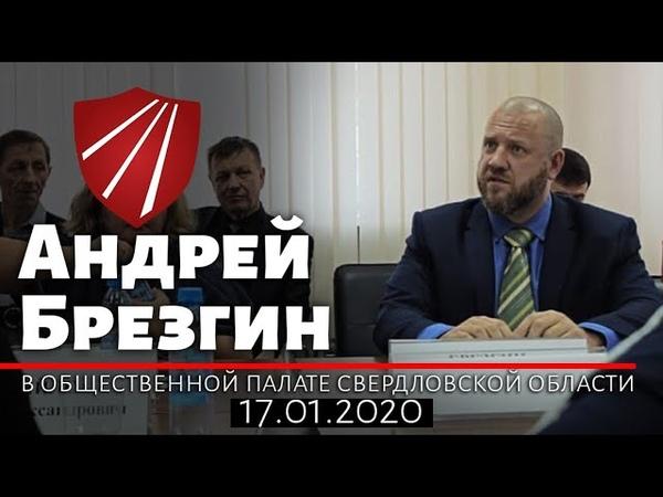 Выступление А Т Брезгина в общественной палате Свердловской области 17 01 2020г