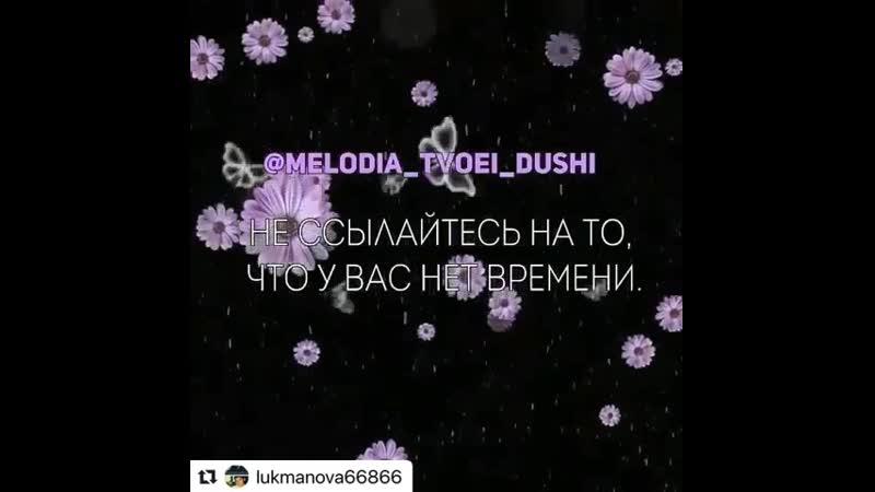 VIDEO 2019 07 20 08 05