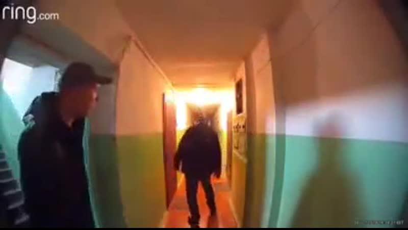 Медвежатники на ул Выборской Киев 04 11 2019