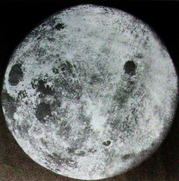кедр как настроить никон для фото луны было, попа получила