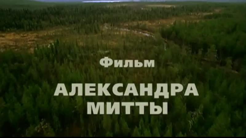➡ Граница: Таежный роман (2000) Серия 8