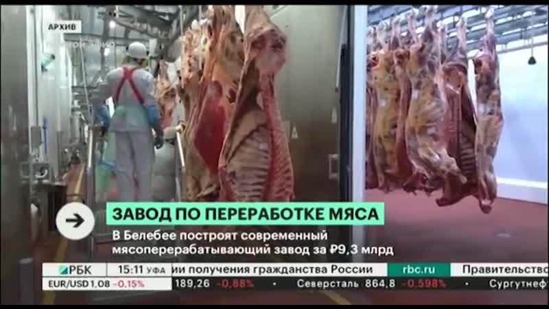 В Белебее построят современный мясоперерабатывающий завод за 9 3 млрд руб