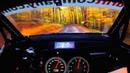 Ралли, 206 км/ч по лесу. Съемка глазами водителя.