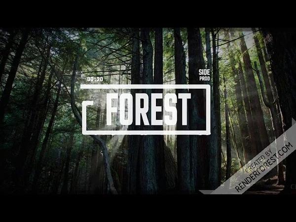 SIDE FOREST tape Lil Uzi Vert beat 170BPM D