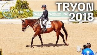 RE-LIVE | Grade I Para Dressage Freestyle - Tryon 2018 | FEI World Equestrian Games™